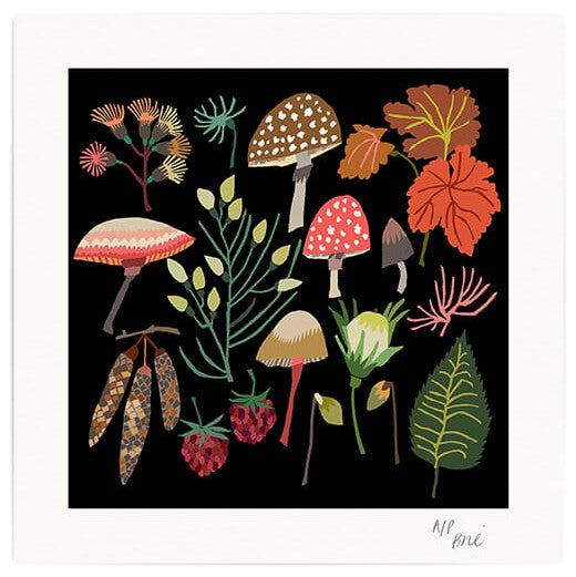 Limited Edition Giclée Print 20 x 20 cm floral and mushrooms design with black background by Brie Harrison