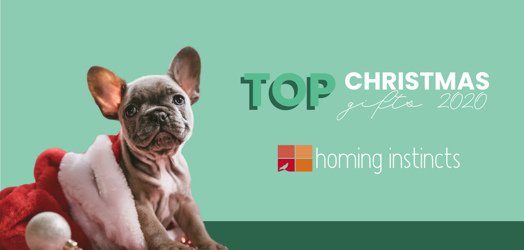 Santa Claus Is Coming! | The Top Christmas Gift Ideas for 2020-Homing Instincts