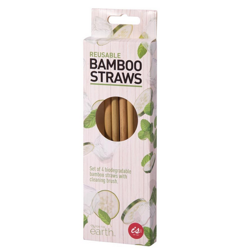 IS Gift | Bamboo Straws (Set of 4)-IS Gift-Homing Instincts
