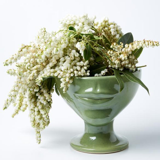 Jones & Co | Simone Tissian Green Vase-Jones & Co-Homing Instincts