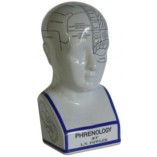Oshi | Phrenology Head Large-Oshi-Homing Instincts