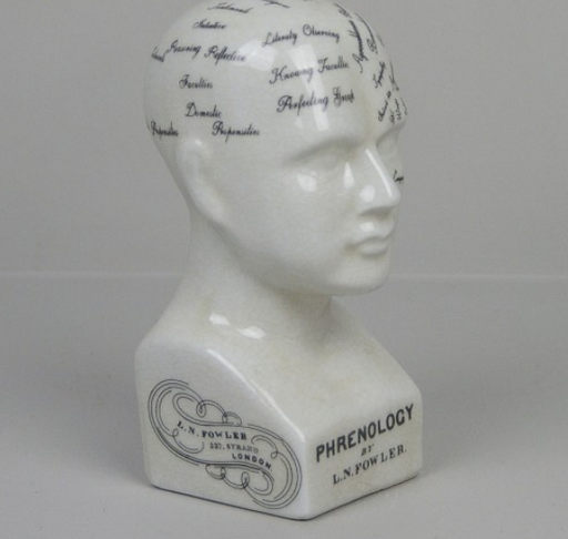 Oshi | Small Phrenology Head (14cm)-Oshi-Homing Instincts