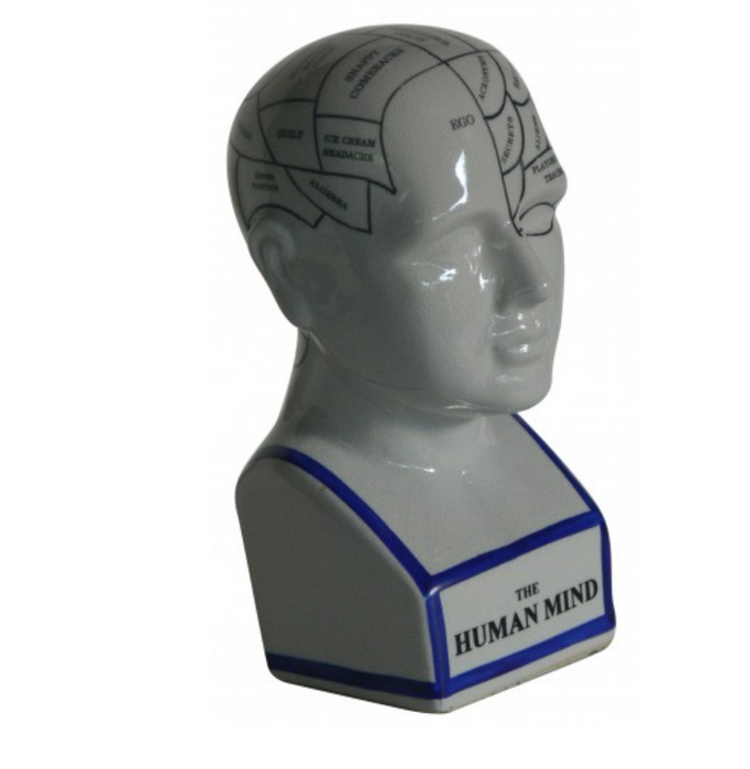 Oshi | The Human Mind (22cm)-Oshi-Homing Instincts