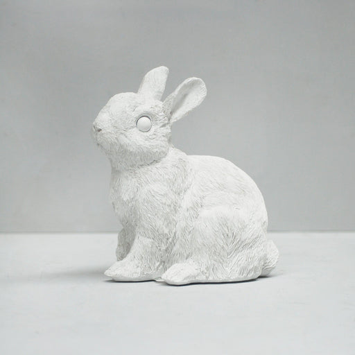 White Moose | Bunny Money Box-Homing Instincts