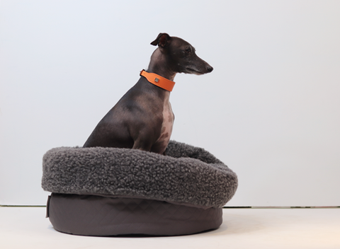 Tranquility Dog Bed in Warm Grey