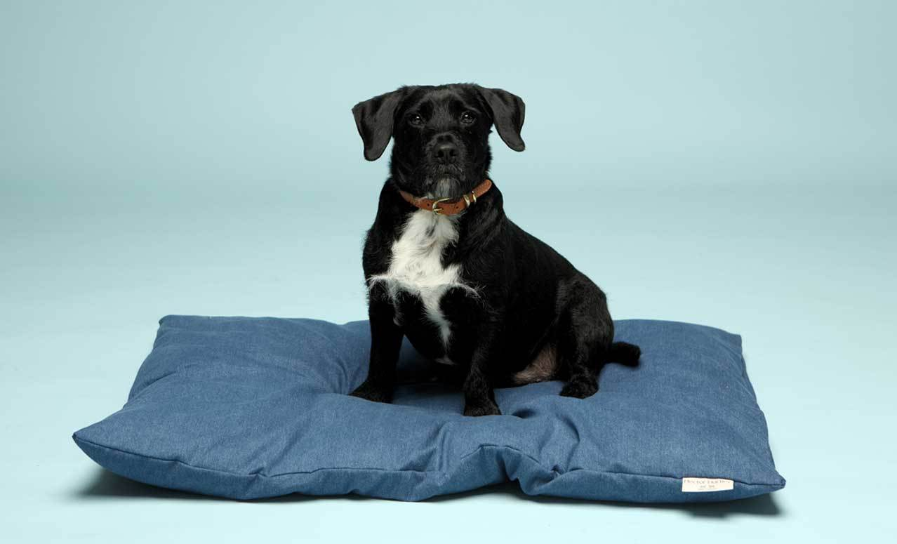 hector-hartley-duvet-dog-bed-denim-blue