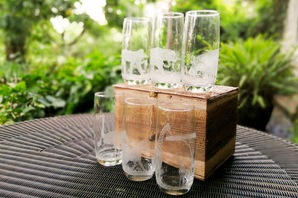 Engraved Water Tumblers (set of 6)