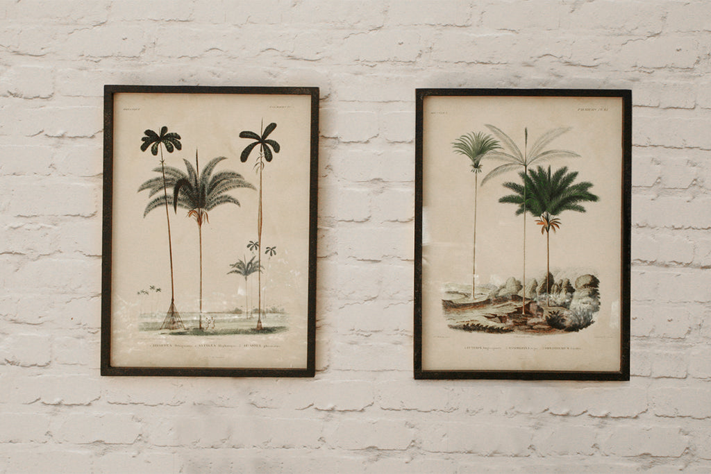Set of 2 Palm Tree Pictures