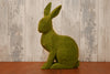 Small Green Sitting Hare