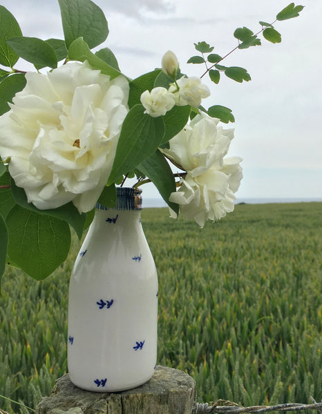 Artisan Ceramics - Seabird Milk Bottle