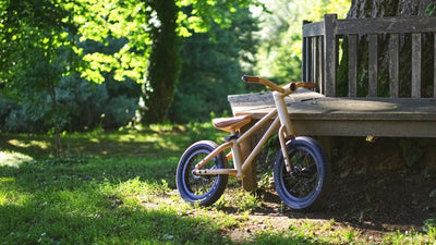 Bixie: An Eco-Friendly balance bike for children.