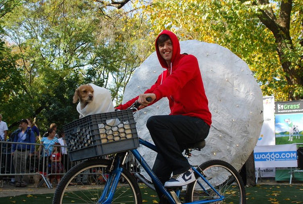 fancy dress for you and your dog - ET Halloween costume