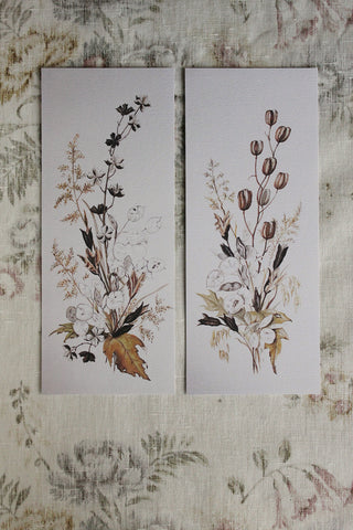 'STILL LIFE' CARD - Seedheads & Grasses