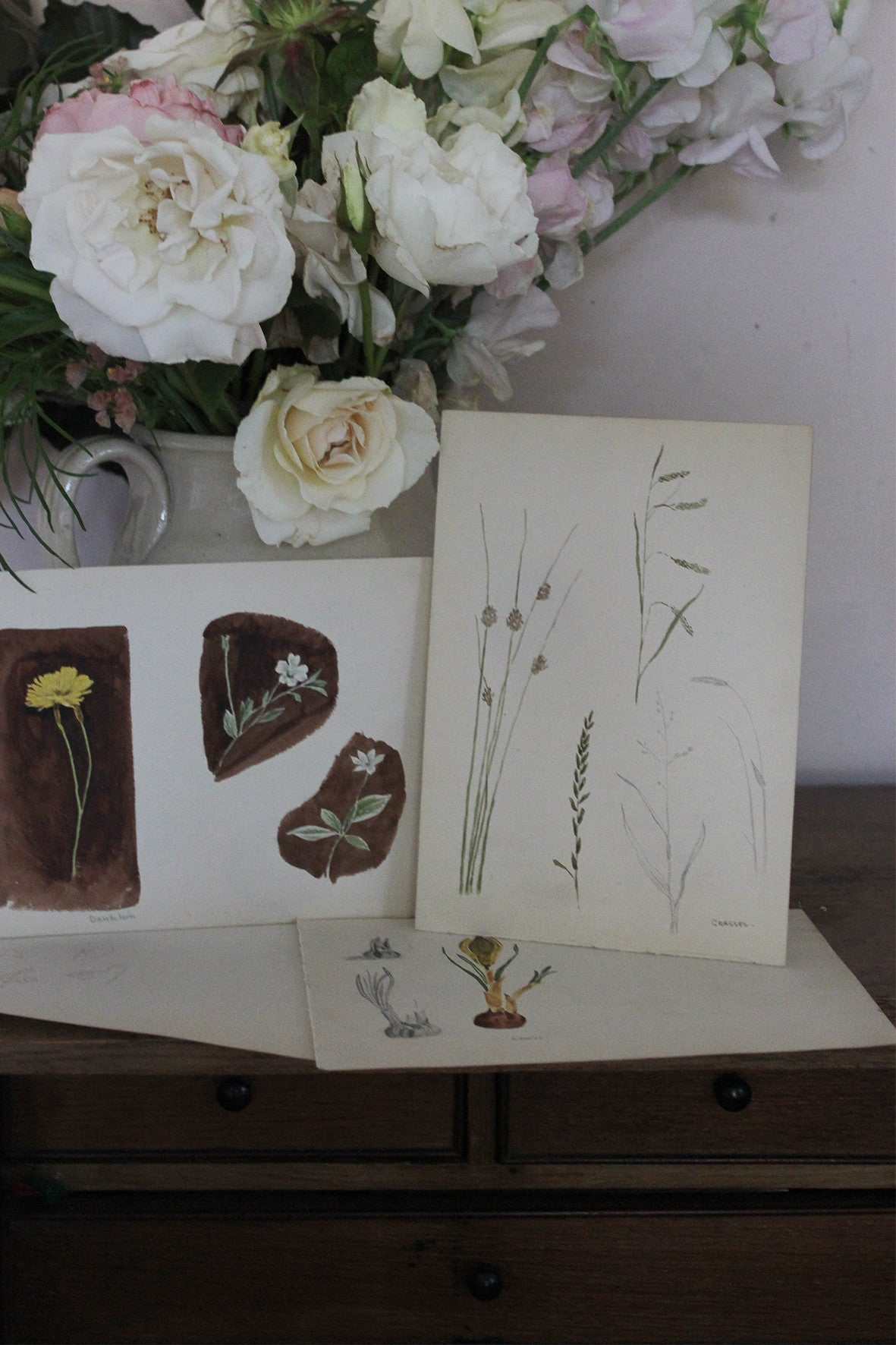 Beautiful collection of botanical drawings and paintings (collection 1)