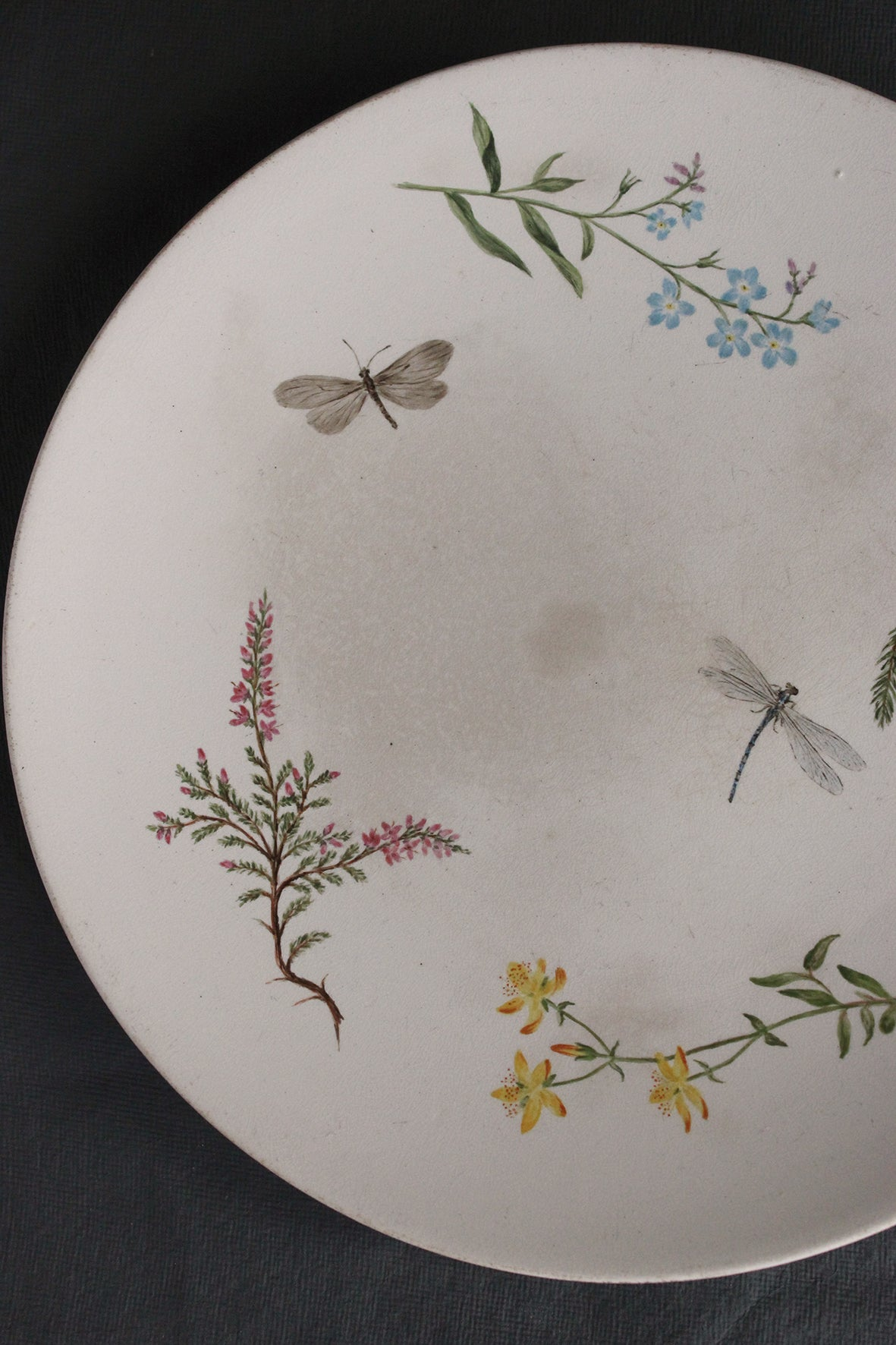 Wildflowers, Dragonfly & Butterfly - Antique Plate