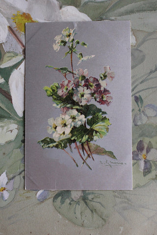 Beautiful Antique Floral Postcards - Silver Grounds