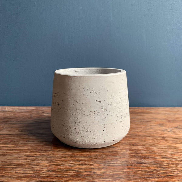 Devil's Ivy Plant Pot | Highgate Flowers