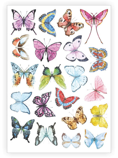 DUCKY STREET kids temporary Tattoo sheet Butterflies designed by Anastasia Lembrik - 1