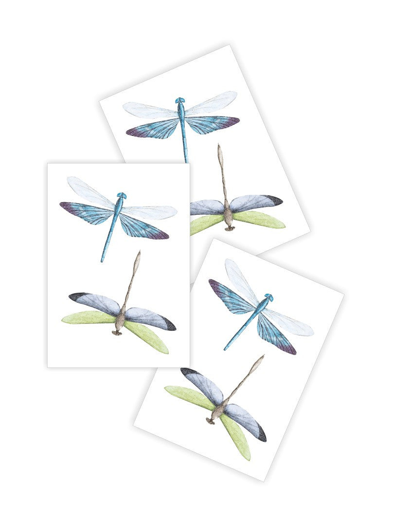 DUCKY STREET kids temporary Tattoo Dragonfly designed by Anastasia Lembrik - 1