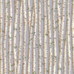 Explore Pebble Gray Birch Trees Yardage by Deb Strain for Moda Fabrics