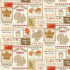 Happy Fall Y'All Natural Thanksgiving yardage by Timeless Treasures Collection