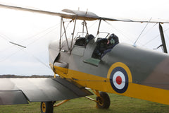 Tiger Moth Flight Prize Winner