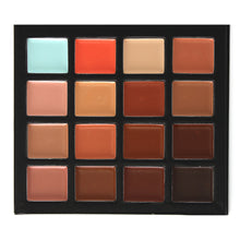 Evanese Professional Beauty Makeup 16 Color Cream Concealer Palette CS16-1