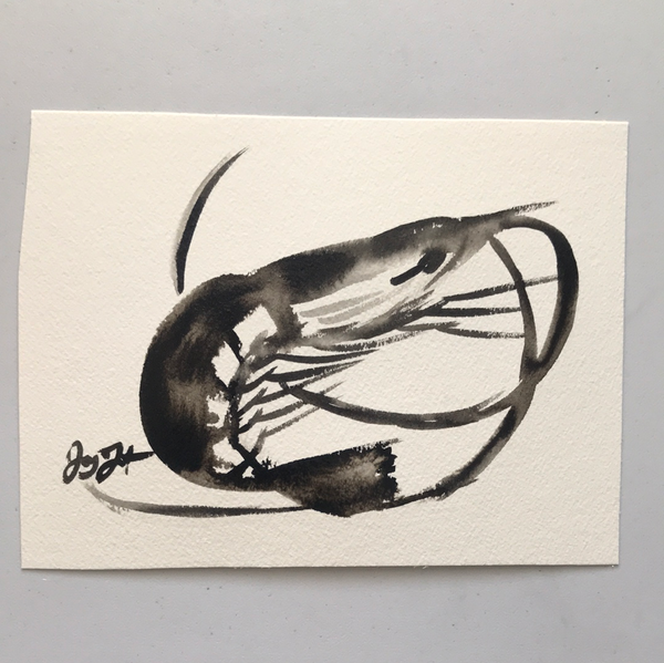 Contemporary series- shrimp