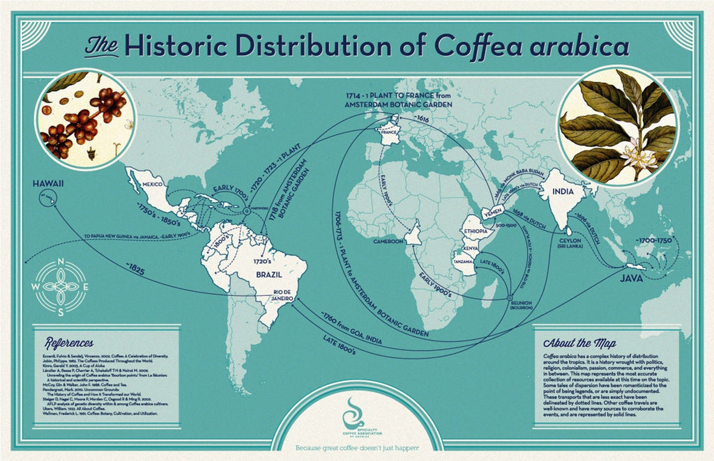 World map showing how coffea arabica spread around the world