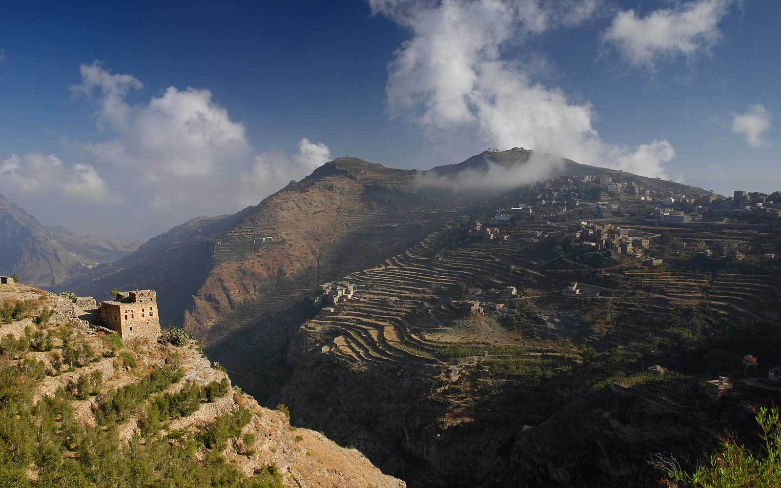 Yemen coffee terraces reaching into the clouds