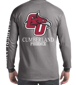 Grey L/S Comfort Colors w/ pocket S-3XL