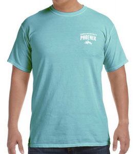 Mint Comfort Color S/S S-4XL