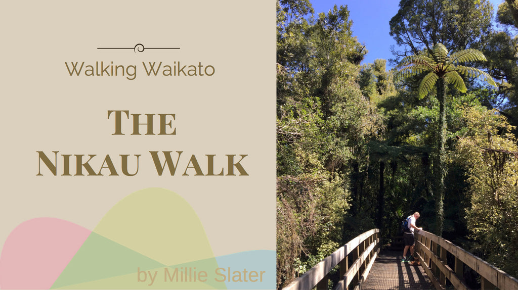 The Nikau Walk by Slater Chartered Accountants