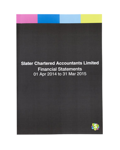 Financial Statements Slater Chartered Accountants Hamilton
