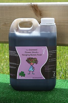 Seaweed Flower, Shrub & Hanging Basket Fertilizer Organic Fertiliser Liquid Feed 2.5L