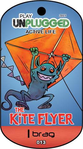 13 - The Kite Flyer