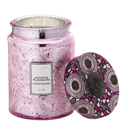 Voluspa - 100 Hour Candle - Japanese Plum Bloom