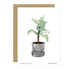 All The Ways To say - Card - Plant - Kalanchoe