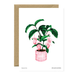 All The Ways To say - Card - Plant - Medinilla