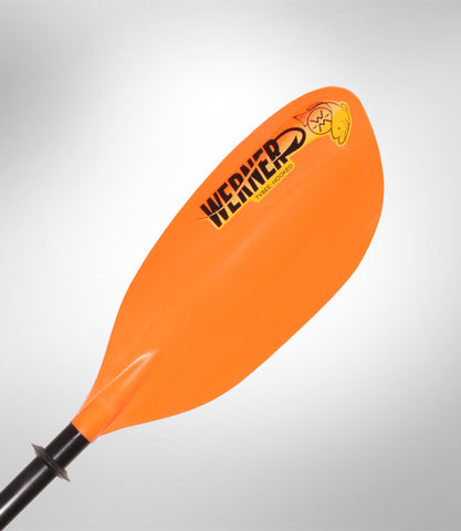 WERNER PADDLES TYBEE: HOOKED 2 PIECE STRAIGHT STANDARD