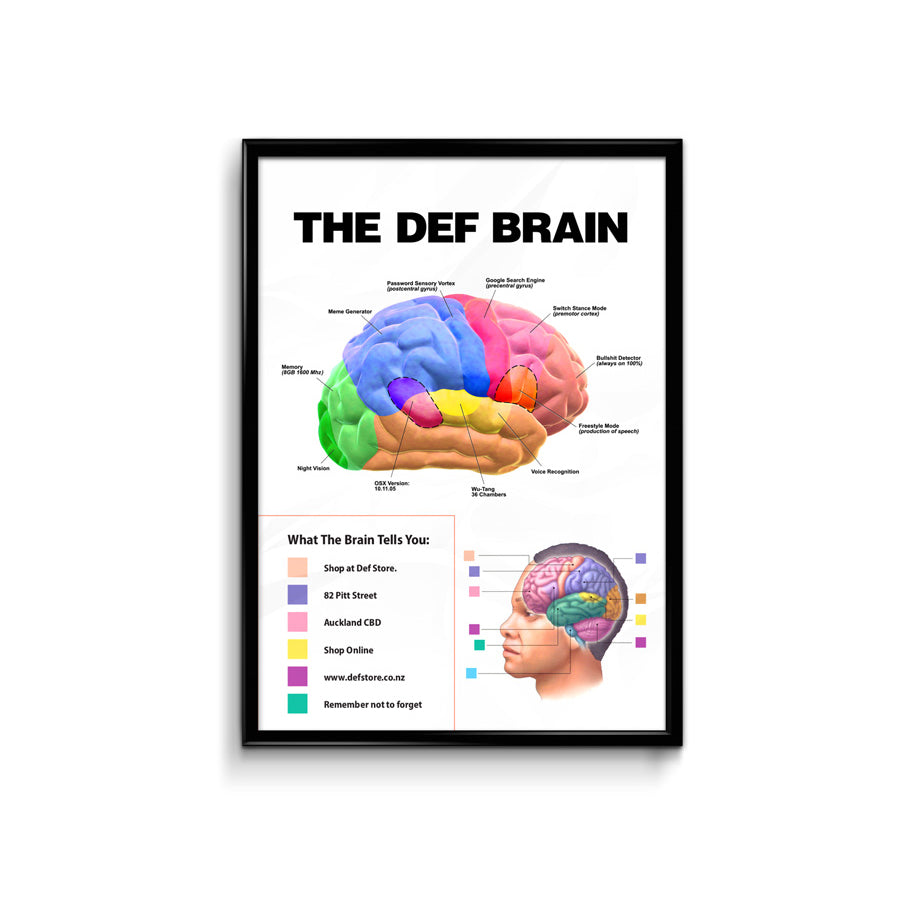Def Store Spring Brain Drop Poster - A3 (Pre-order)