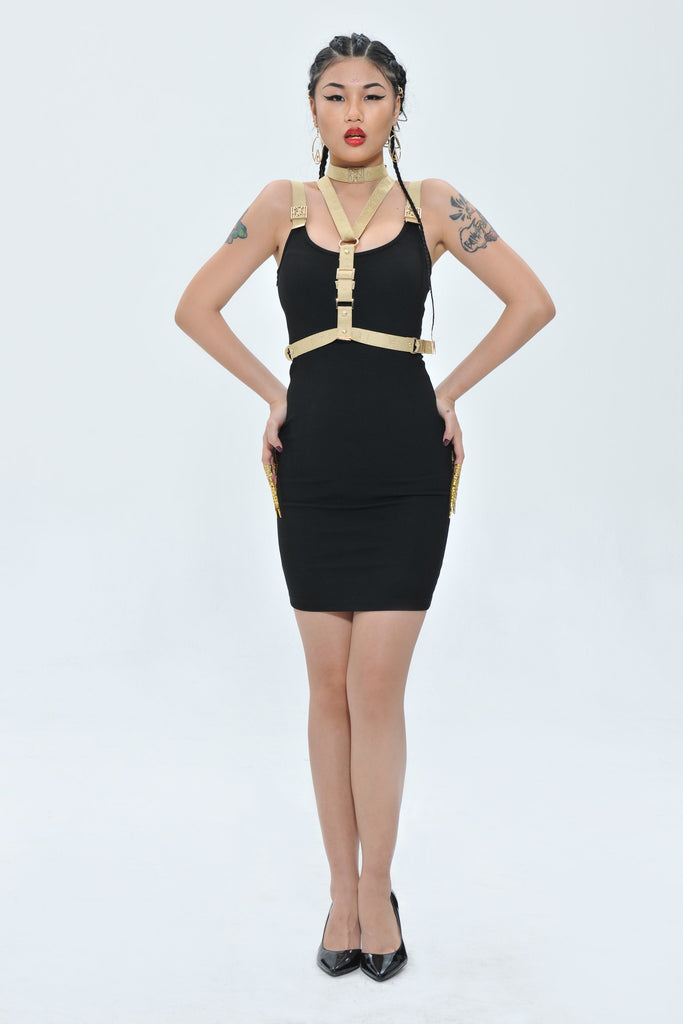 Imperial Agent Dynasti Dress + Imperial Champagne Choker