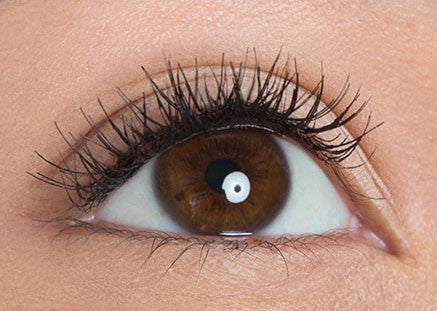 Refined Lashes
