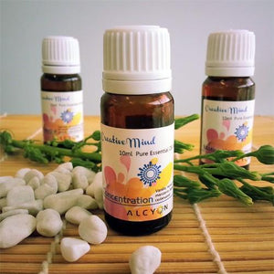 Alcyon Diffusers Creative Mind 3 Pack of Pure Essential Oil Blends essential oils - Nest 2 Me Baby Carriers Australia