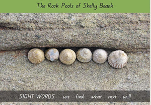 Nature Hearts Education Early Reader Book - The Rockpools of Shelly Beach - Level 3 Series 1 Sight Words books - Nest 2 Me Baby Carriers Australia
