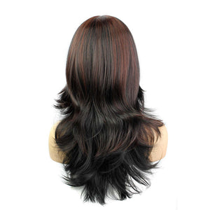 Charm Ombre Curly Wavy Wigs Bonde Long Women Synthetic Hair Weave Bundles Kanekalon Heat Resistant Hair Bulk Wig WL935B