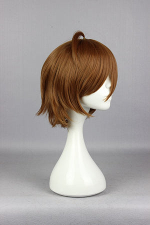 NEW ARRIVAL Cartoon Akame ga KILL! Tatsumi Anime Short Brown Cosplay Hair Wig Synthetic Hair Cosplay Wig,Colorful Candy Colored synthetic Hair Extension Hair piece 1pcs WIG-572A