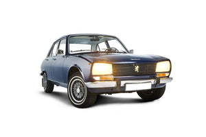 Peugeot 504 Coupe Cabrio V6 - Stainless Steel Exhaust (1975-83)