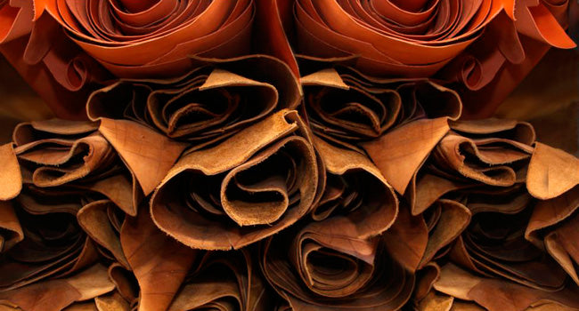 The Attributes of Napa Leather