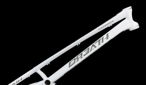 [ FREE shipping ] BREATH TOMORROW 20'' (with headsets) DISC Frame for Bike Trials